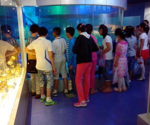 省海洋渔业指挥部举行海洋生物标本馆开放活动丰富学生暑期生活