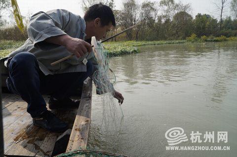 撒网捕鱼的步骤技巧视频