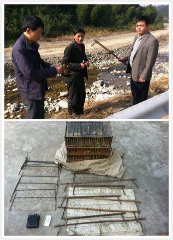 淳安县文昌镇查处一起非法猎捕野生鸟类案件