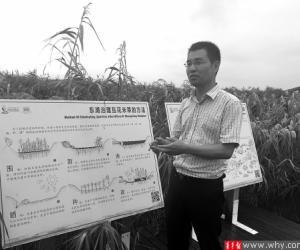 汤臣栋:在东滩湿地坚守16年 为上海守护一片自然净土