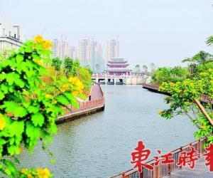 东江时报:全市主要河涌月月监测按季公开
