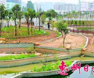 惠州日报:望江沥综治工程预计年内完工