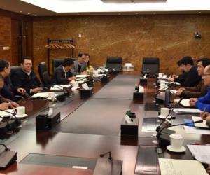 王琳参加三峡集团审计部党支部组织生活会