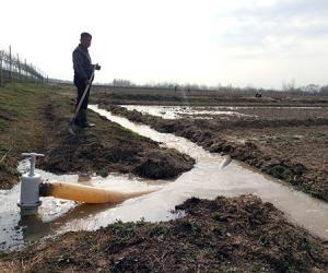 高青河务局淤区复垦灌溉设施效果好