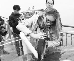 【中国能源报】中华鲟放流:三峡绿色水电新名片