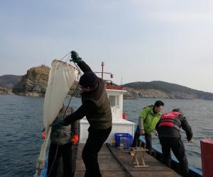 """按计划完成""""渔业优势品种病害及养殖环境风险 预警预报监测""""项目半年分析报告"""