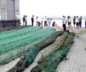 东海县清理整治违规渔具(图文)