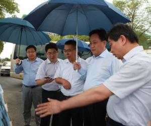 7月10日,区委书记程向民调研华星西河时要求: 三制并举,水岸联动,实现水环境治理长治久清