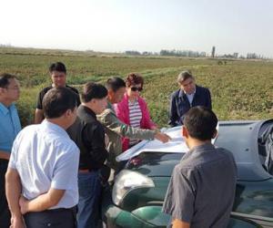 樊君梅副厅长一行督导沙雅县农业高效节水增收试点工作