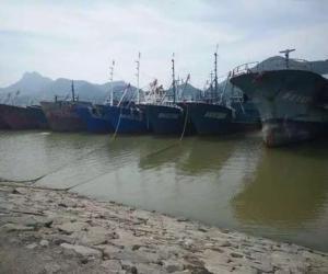 临海市市长梅式苗检查防台防汛工作