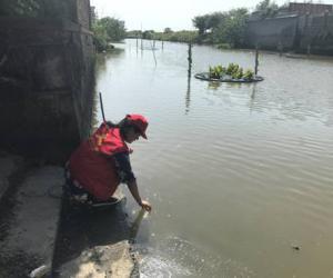 沈荡镇聚金村组织开展河道进行巡查活动