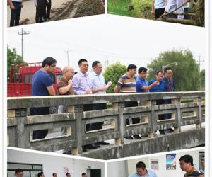 金山区副区长、副总河长王益洋率队开展节前安全检查及河道巡查