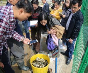 峡江水利枢纽开展增殖放流活动 助力生态文明建设