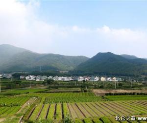 【浙江在线】清水绕村 百花为媒 北仑以美丽经济激活乡村大花园建设