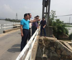 市人大视察白蕉联围排涝整治工程建设推进情况