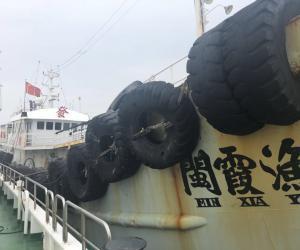 高压严打 临海缴获违禁渔获物71827公斤