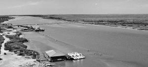 光明日报:18年不断流 黄河下游再展美丽生态画卷